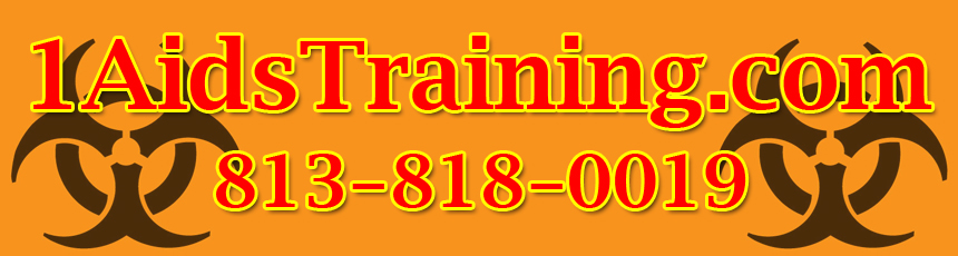 All training courses meet requirements for their prospective professions.